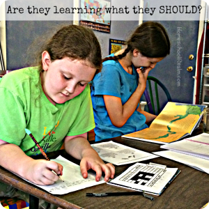 Are they learning what they SHOULD? HomeschoolRealm.com