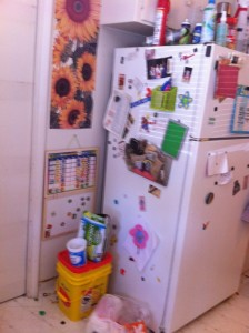 Before pic of fridge, 2013 Great Summer Purge and Clean, HomeschoolRealm.com