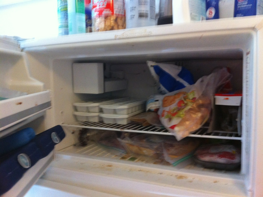 Before pic of freezer, 2013 Great Summer Purge and Clean, HomeschoolRealm.com