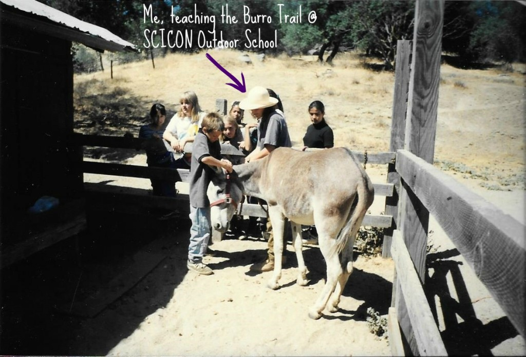 burro-trail