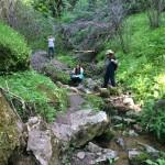 Exploring the creek below Dead Man's Falls