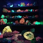Glow in the dark rocks in the museum!