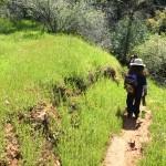 Trail to Dead Man's Falls