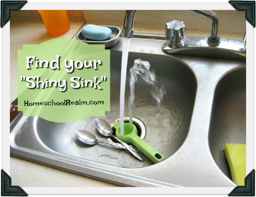 Find your shiny sink